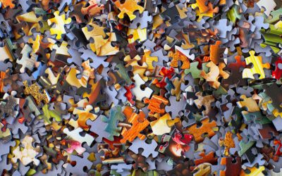 Emoties, patronen en overlevingsmechanismen in crisistijd